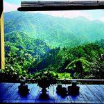 De Blue Mountains: de kroon op de Jamaicaanse natuur