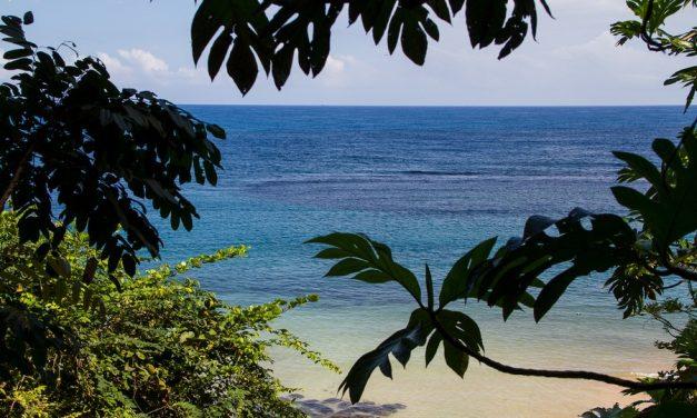 Niet te missen bezienswaardigheden op Jamaica