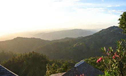Ontdek de magnifieke natuur van Jamaica