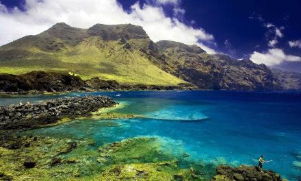 Naar welk Canarisch eiland boek jij je vliegvakantie?