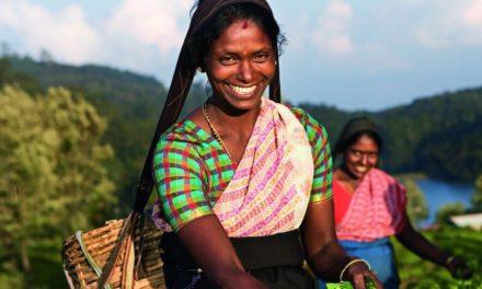 Op familievakantie naar het exotische Sri Lanka