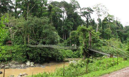 Prachtigste plekjes op Borneo
