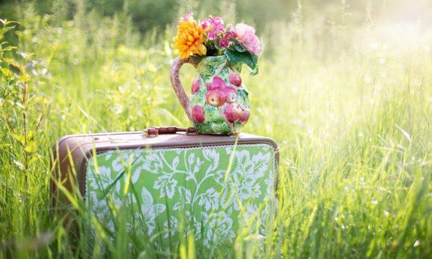 Waarom is de lente de ideale periode voor een citytrip?