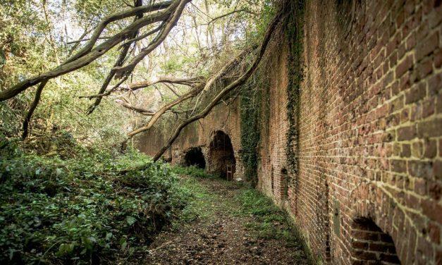 Oeverlopen in Oost-Vlaanderen: de drie fraaiste routes