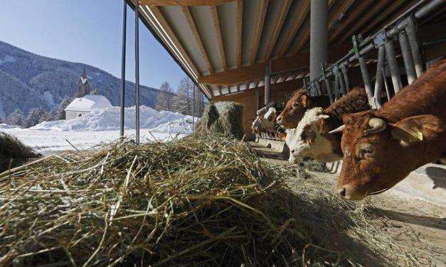 Tradities in Zuid-Tirol